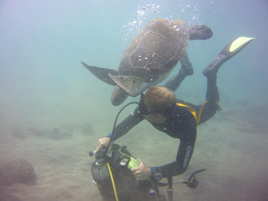 Tauchkurse Open Water Diver Ausrsütung ablegen