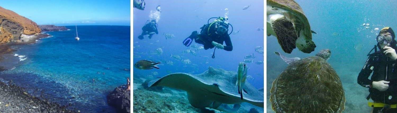 Galerie der Tauchschule Ocean Trek auf Teneriffa