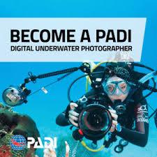 Spezialkurs Unterwasserfotografie
